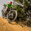 Stock Photo: MTB downhill