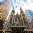 St. Patricks Cathedral — Stock Photo #7979072