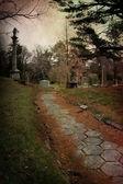Cemetery Path — Stock Photo
