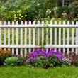 Picket Fence — Stock Photo #9978199