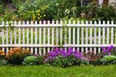 Picket Fence — Stock Photo