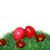 Two eggs on a green field with red flowers — Stock Photo