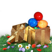 Paskalya hediyesi yeşil çayır üzerinde — Stok fotoğraf