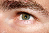 Brown eye — Stock Photo