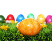 Yellow egg in the foreground — Stock Photo