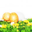 Yellow-painted Easter eggs — Stock Photo