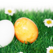 Stock Photo: A yellow and a white egg