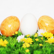 Beautiful Easter Eggs — Stock Photo