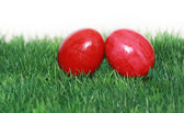Red Easter eggs in the focus — Stock Photo