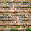Ancient brick wall — Stock Photo #10138510