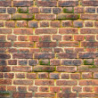 Ancient brick wall — Stock Photo #10138521