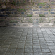 Ancient stone pavement — Stock Photo #10138943