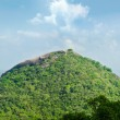 View from mount Sigiriya into mountain in the shape of the fem — Stock Photo