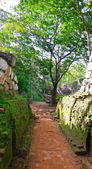 Footpath in a park near mount Sigiriya, Sri Lanka (Ceylon). — Stock Photo