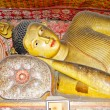 Lying Buddha statue — Stock Photo #9206796