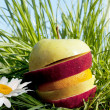 Fruit allsorts on a green grass — Stock Photo