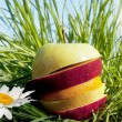 Fruit allsorts on green grass — Stock Photo #10488228