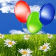 Celebratory balloons on a green summer meadow — Stock Photo #9797227