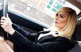 Krásná podnikatelka řídit auto — Stock fotografie