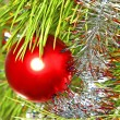Colorful Red Christmas ball on a pine branch. — Stock Photo