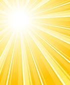 Beautiful summer sunburst. Vector background. — Stock Vector