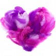 Heart in pink feathers isolated on white — Stock Photo