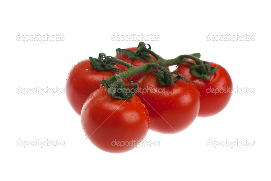 Fresh tomatoes shot on a white background. — Stock Photo #10239839