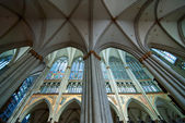 Gothic cathedral in Cologne (Germany) — Stockfoto