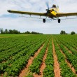 Crop dusting — Stockfoto