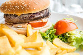 Cheese burger — Foto de Stock