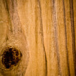 Exture of wood - Photo