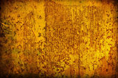 Wood grungy background — Foto Stock