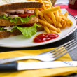 Sandwich with chicken — Stockfoto #8908161