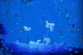 цветочный стиль текстур, изолированные на белом фоне — Стоковое фото