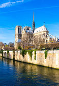 Beautiful view Notre Dame Cathedral — Stock Photo