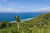 Paesaggio tropicale — Foto Stock