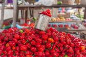 Weergave van spaanse peper — Stockfoto