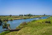 Canal des Pangalanes — Stock Photo