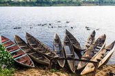 Canal de pangalanes des — Foto de Stock