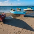 Traditional fishing boats — Stock Photo #9784215