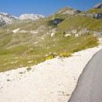 Asphalt mounatin route - montenegro — Stock Photo