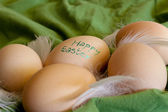 Happy easter - group of eggs — Stock Photo