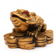 Feng shui frog, a symbol of China — Stock Photo
