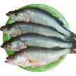 Fresh fish is perch on a plate — Stock Photo