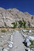 Caminho deserto — Foto Stock