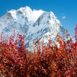 Ama Dablam — Stock Photo #10689321