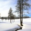 Wintry landscape scenery — Stock Photo