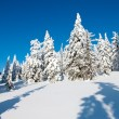 Wintry landscape scenery — Stock Photo #9627116