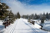 Wintry landscape scenery with modified cross country skiing way — Stock Photo