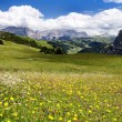 View from passo gardena alias grodner joch - sella gruppe dolomiti italy — Stock Photo #9631843